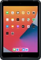 iPad116