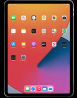 iPad132